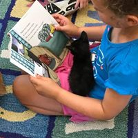 A child sits on a colorful rug and is reading a book with a black kitten in her lap.