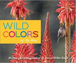Book Cover for Wild Colors by Elaine Miller Bond.