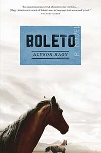 The book cover for Boleto has a gray sky background. In the foreground, is a brown horse looking at another brown horse that is walking away.